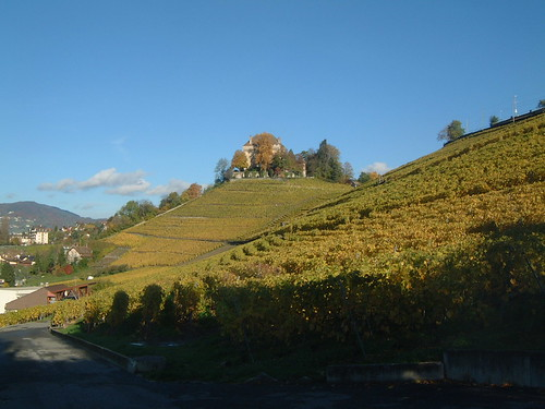 Montreux Vineyards