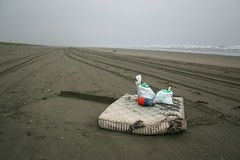 Sunset Beach, Oregon, during Spring Beach Cleanup