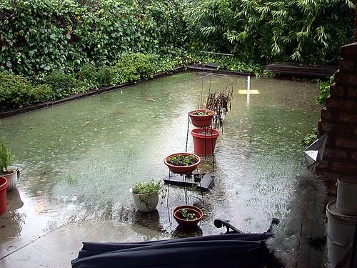 Like a pond