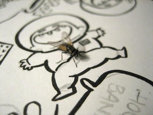 La mosca y El Niño Gilipollas que Quería Volar