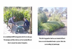 photos of septic system garden beds