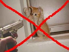 5 No Kill