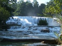 Waterfall - Agua Azul (Chiapas)