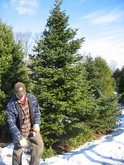 Cutting the Second Chosen Tree
