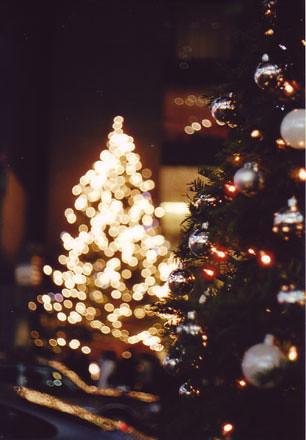 銀座MIKIMOTOのクリスマスツリー