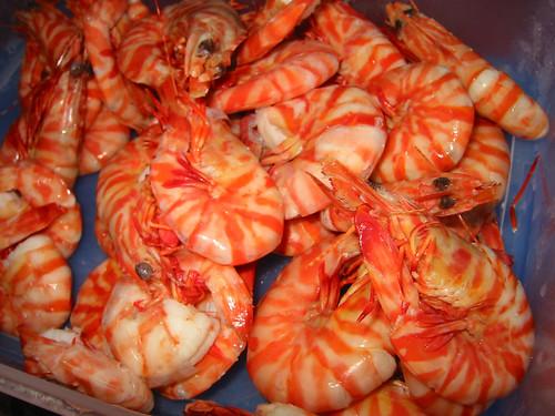 how to cook prawns: cook tiger prawns