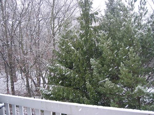 Snowy Day I