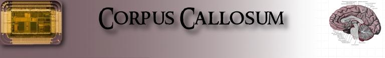 The Corpus Callosum Banner