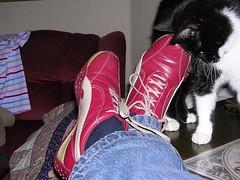 Sneakers4 liten