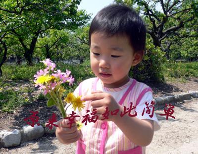 看虫虫、采野花(不采白不采)  - 丹丹 - 幸福花儿开。。。