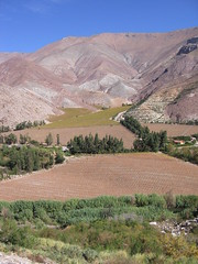 Elqui Valley landscape