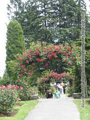 Jardim das Rosas