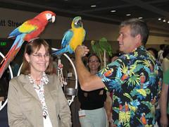 Parrots Invade SLA