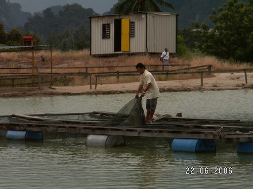 Tg Rambutan Pond 04