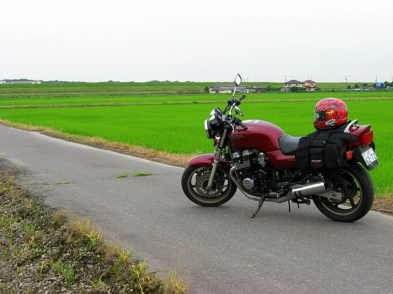 My bike by a rice field