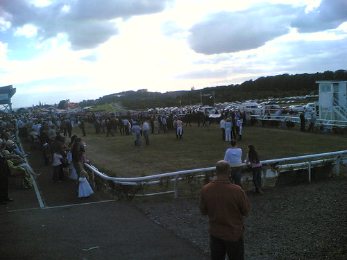 Bellewstown Races
