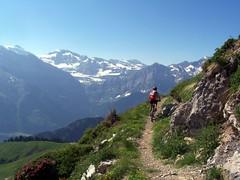 08 - La haut sur la montagne..., by VTTnet