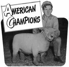 American Champions