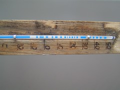 Adios a mi termómetro