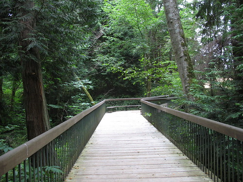 2 woods bridge 3