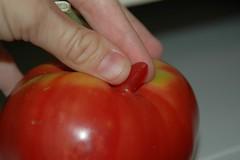 Tomato Three