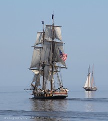 Tall Ships Niagara and Lynx photo by MyGallery