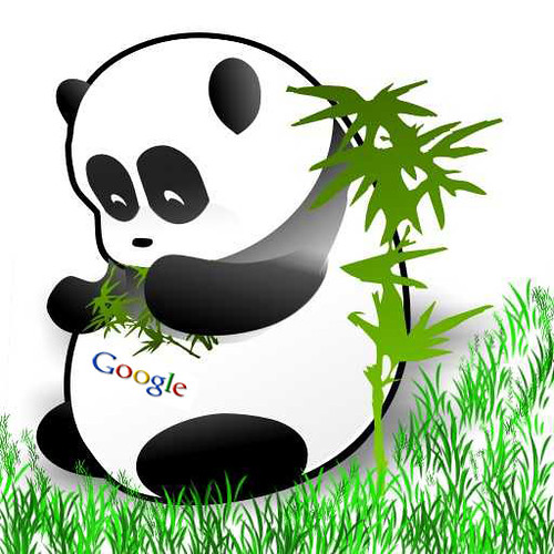 5949777449 1c0c0c02cc Breaking Googles Panda Sends Reputation Managers Running!