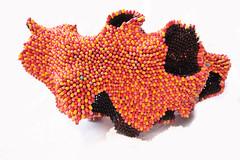 """Disease"". pills sculpture. 9500 empty capsules. photo by noumeda"