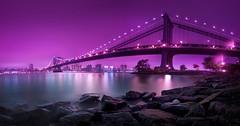 'Bridging Purple,' United States, New York, New York City, Manhattan Bridge, Dumbo photo by WanderingtheWorld (www.ChrisFord.com)
