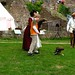 Falconry at Mont Orgueil III