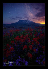Life in a Museum photo by Ryan Dyar