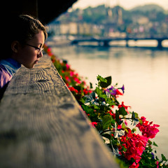 lucerne fence photo by Kirstin Mckee