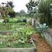 Vista Hermosa Gardens (15)