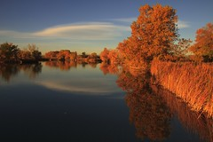 Lake Mary [Explore] photo by mclcbooks