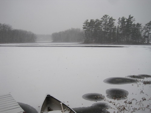2011-11-19 Early Winter 006