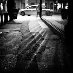 Rays photo by Brînzei