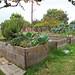 Vista Hermosa Gardens (6)