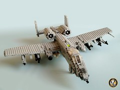 190th FS 'Skullbangers' A-10A Warthog (1) photo by Mad physicist