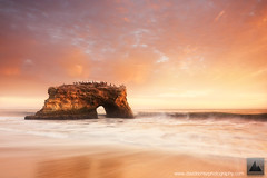 Bridge Into The Sun - Natural Bridges, Santa Cruz, California photo by david.richter