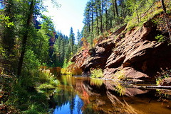 West Fork of Oak Creek - Oak Creek Canyon - Sedona photo by Al_HikesAZ