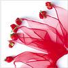 6218983199_f2dac4fefe_t
