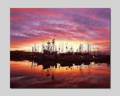 Dawn's Eye photo by RZ68