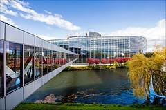 5-8 October 2015 - Strasbourg plenary session