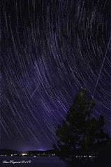 Lake Tahoe Star Field Perseid Meteor Shower 2011 photo by Sean Raymond Photography aka ShutterKrazy