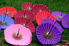 "Umbrella,s (hand made) Bo Sang, the ""umbrella village"" near Chiang Mai in Northern Thailand. photo by Thai pix Wildlife photography,,"