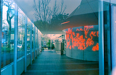 "University of Auckland | ""Kodak Ultra Compact 800"" Disposable Camera photo by salman.javed"