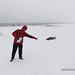 Антарктида - с тюленем