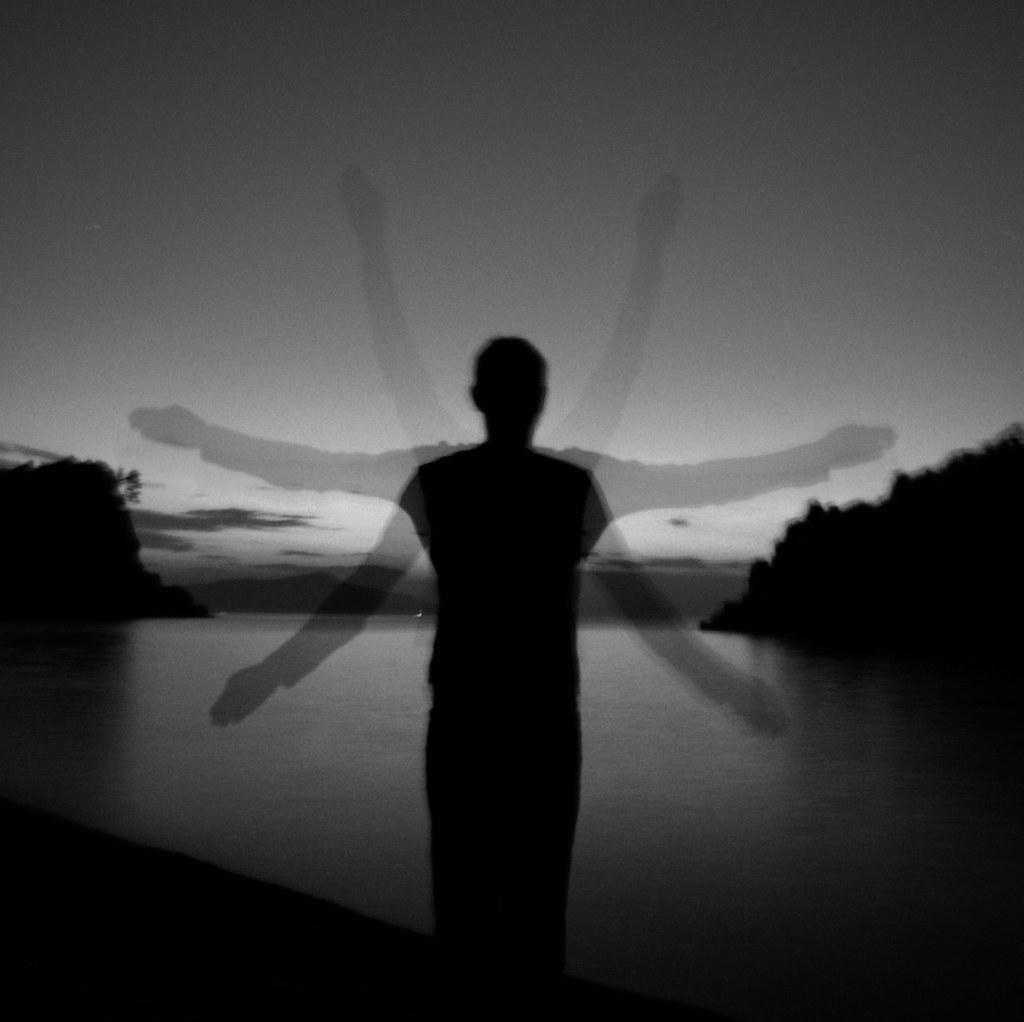 insect sunrise photo by Vasilis Amir