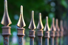 Fence Spikes photo by Catskills Photography