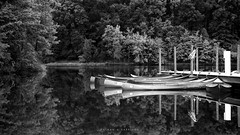Stillness  7/52 photo by EspressoTime
